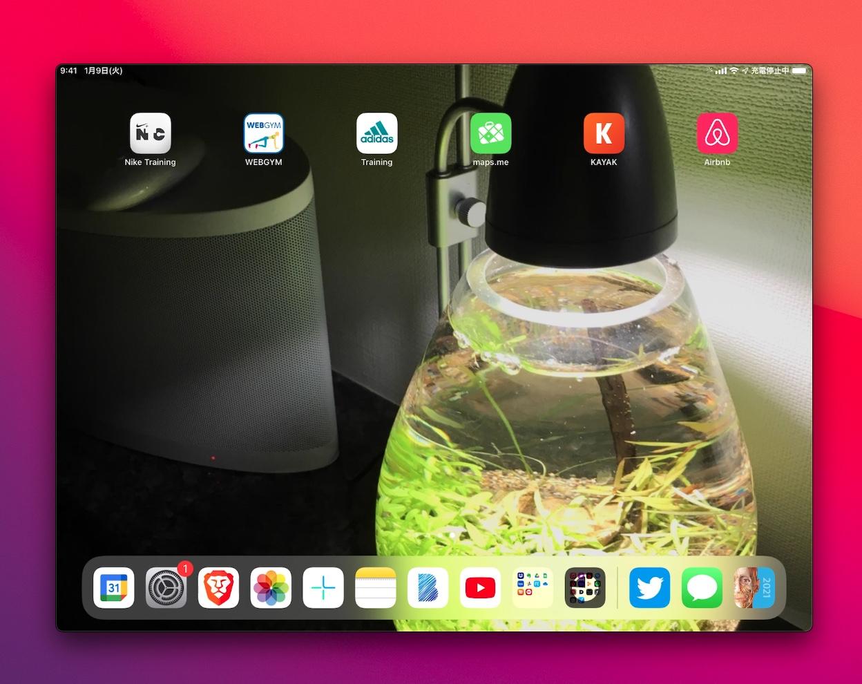 iPadの画面をmacに表示